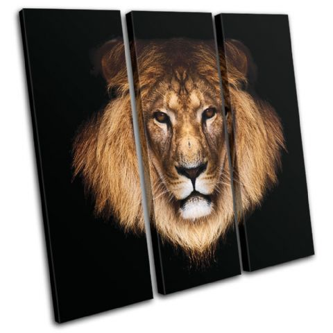 Lion Wild Animals - 13-1294(00B)-TR11-LO